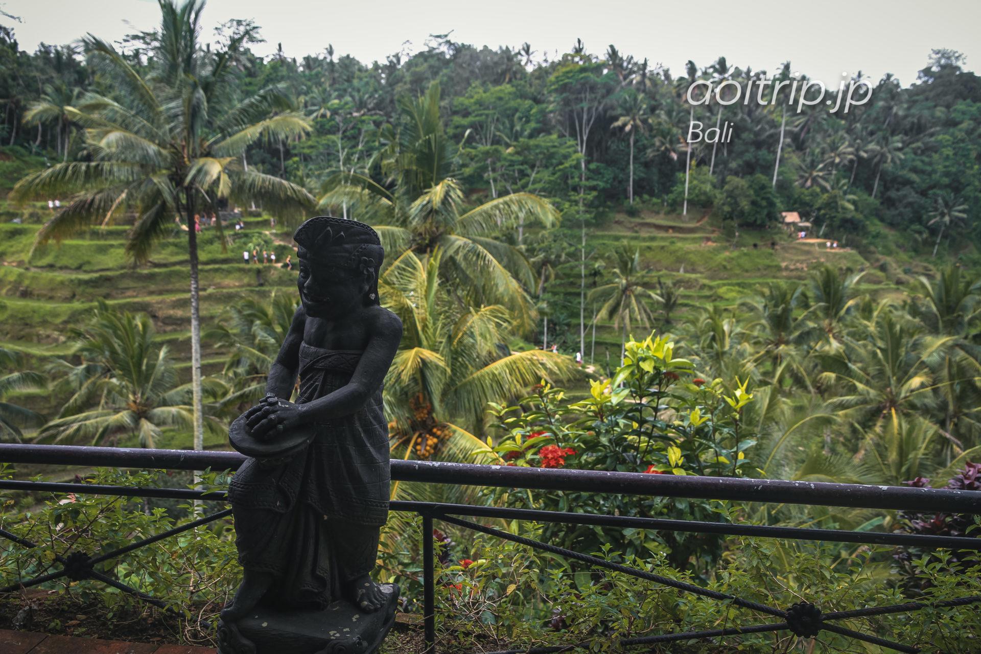テラス パディ カフェ Teras Padi Cafe, Bali