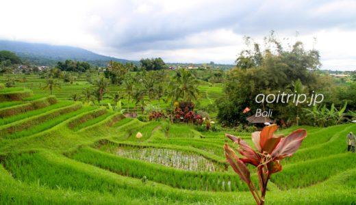 ジャティルイ棚田のライステラス|Jatiluwih Rice Terrace