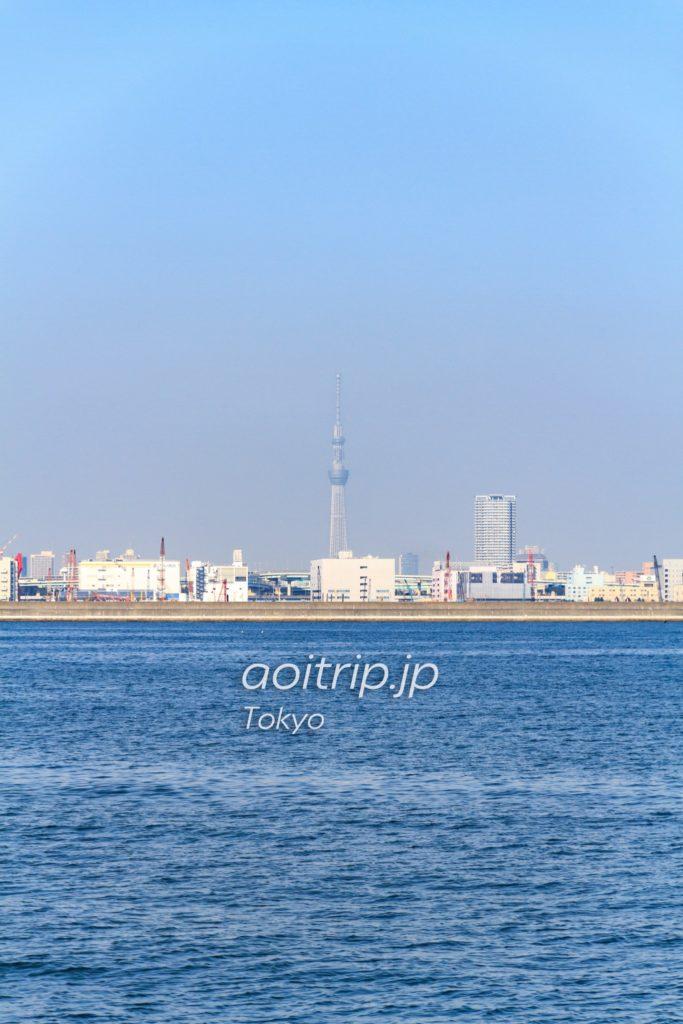 東京湾から見える東京スカイツリー