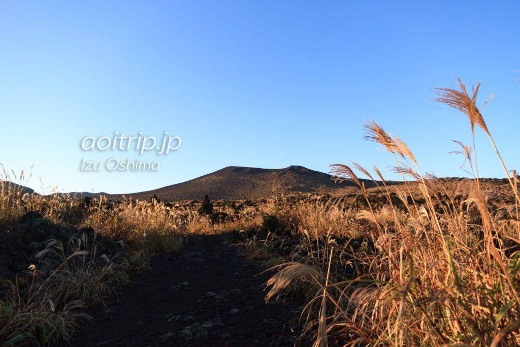 伊豆大島の秋の三原山