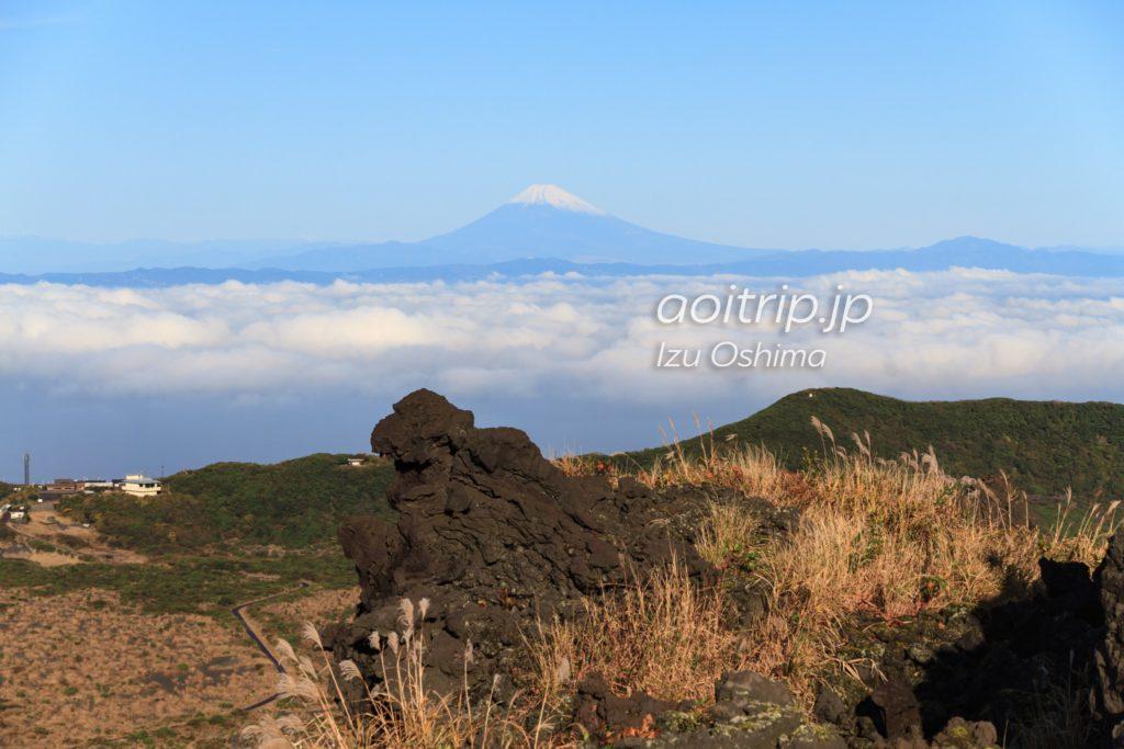 伊豆大島のゴジラ岩