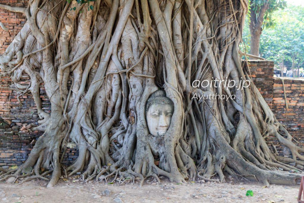 ワットマハタート 仏像の顔