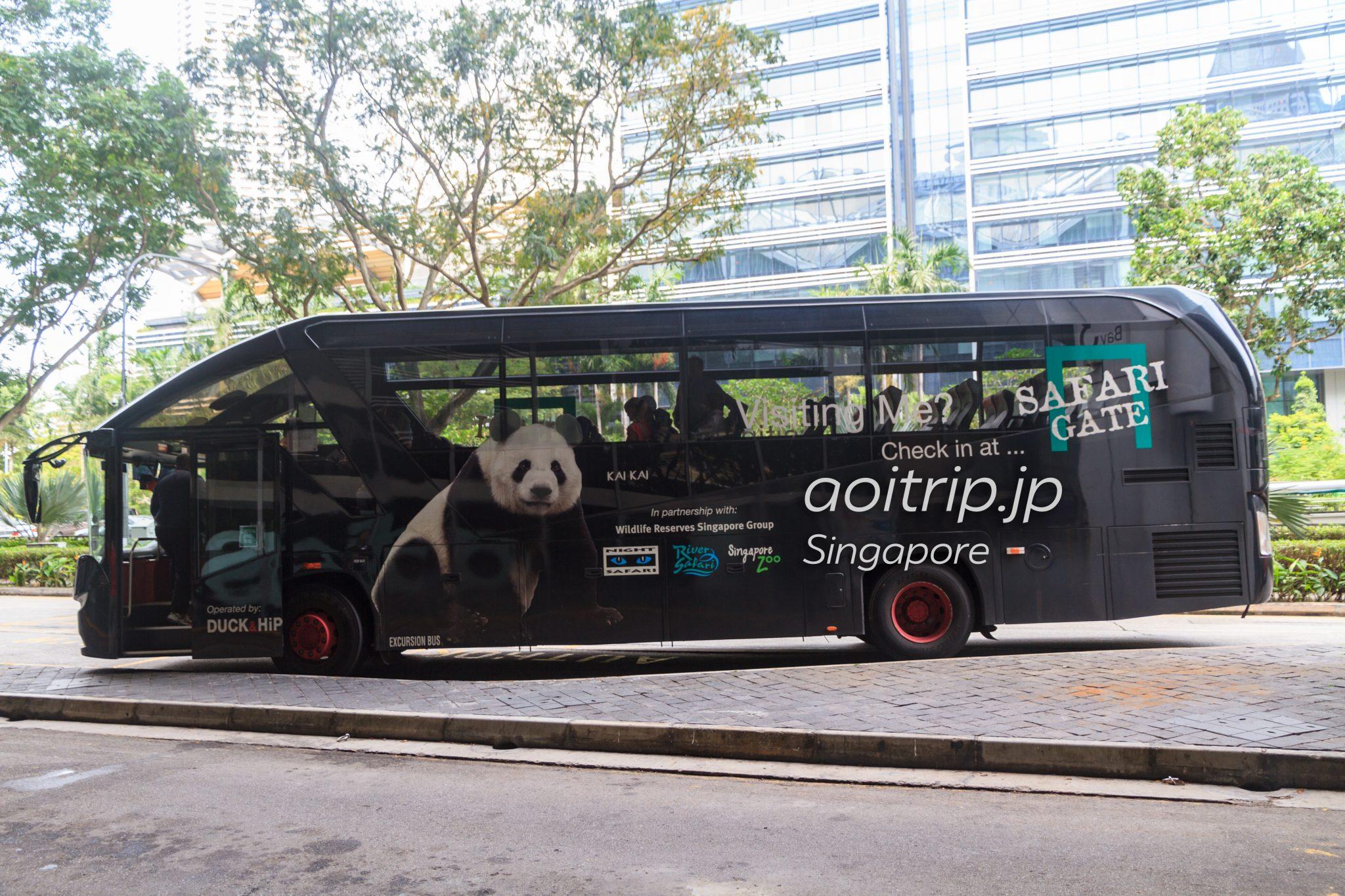 シンガポール サファリゲートのバス