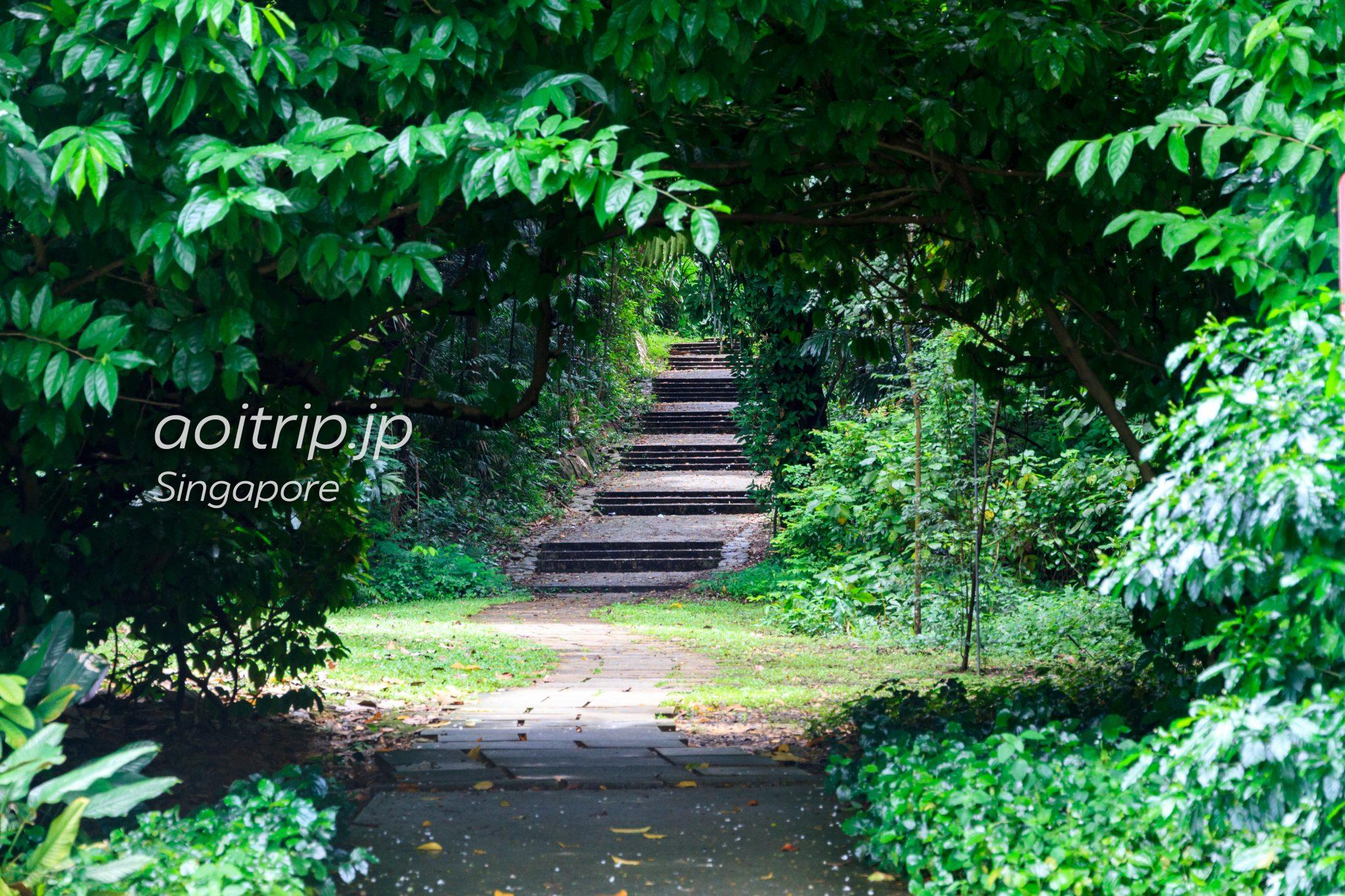 マウントフェーバーへの階段