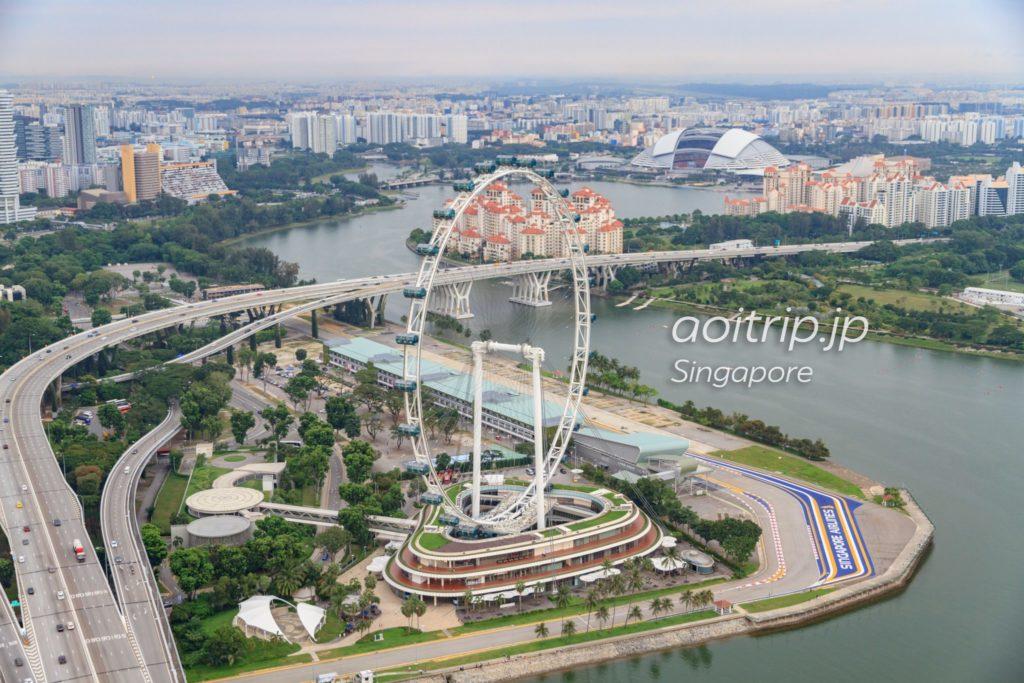 サンズスカイパークから見たシンガポールフライヤー