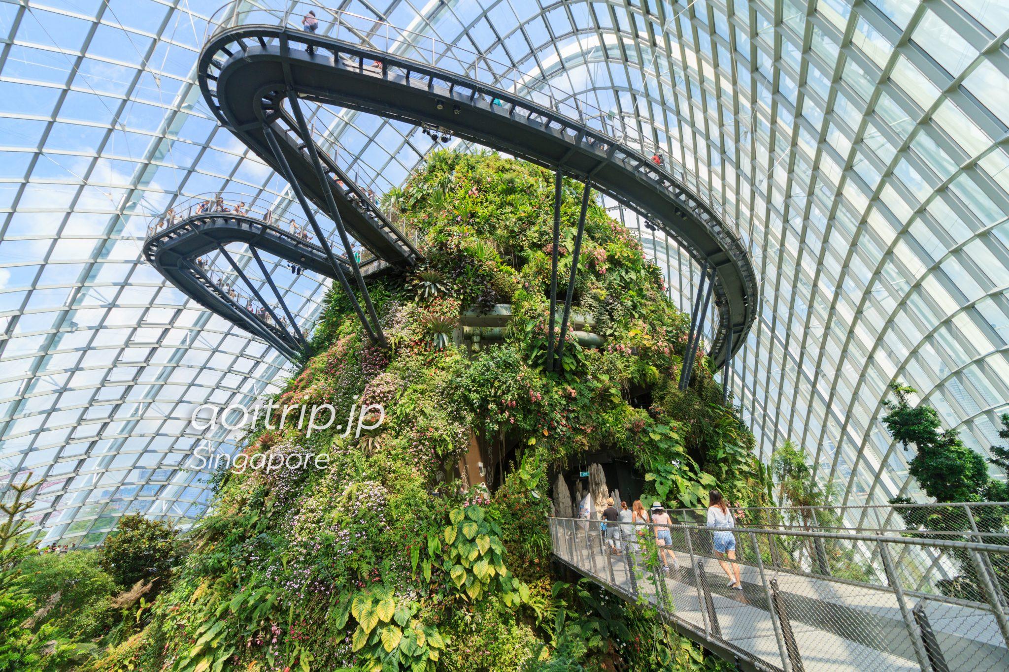 singapore gardensbythebay cloudforest