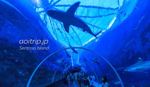 シーアクアリウム水族館(セントーサ島のマリンライフパーク内)