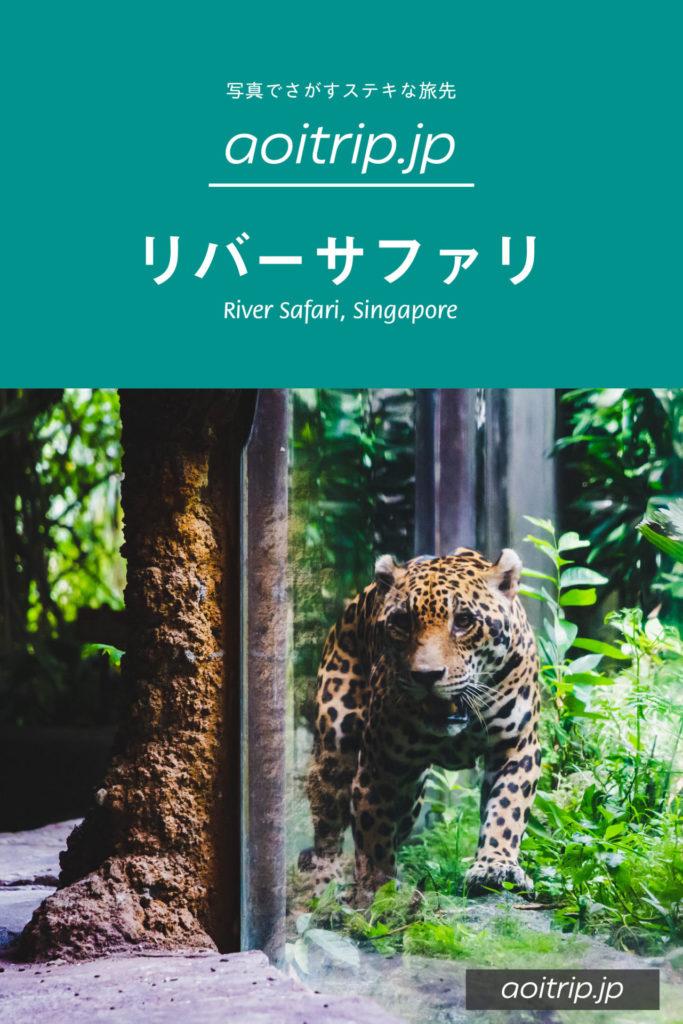 シンガポールのリバーサファリ|River Safari, Singapore