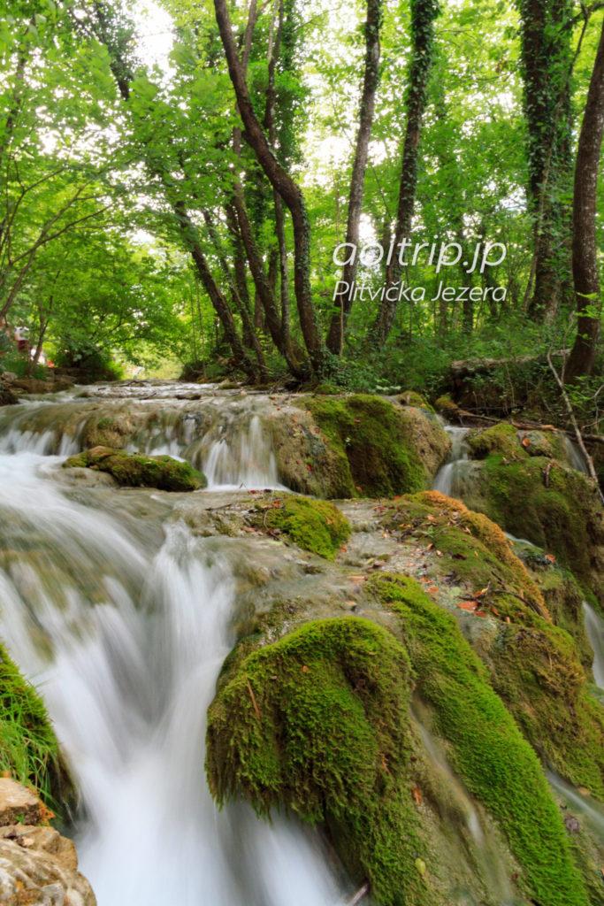 プリトヴィツェ湖群国立公園の画像 p1_16