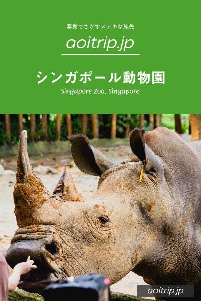 シンガポール動物園 訪問記|Singapore Zoo