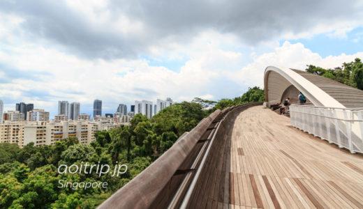 サザンリッジ 森林浴のウォーキングコースをゆく(シンガポール)