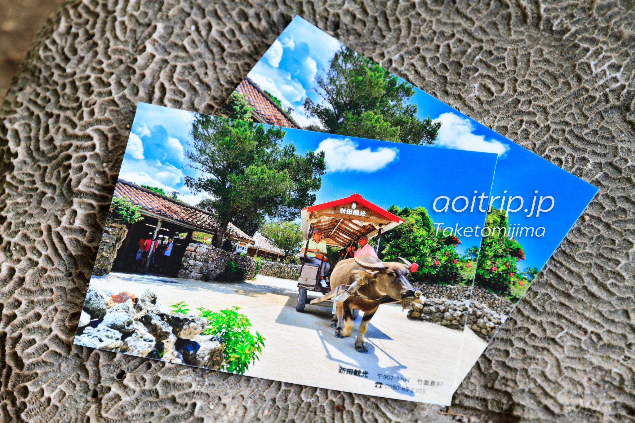 竹富島 新田観光の水牛車 ポストカード
