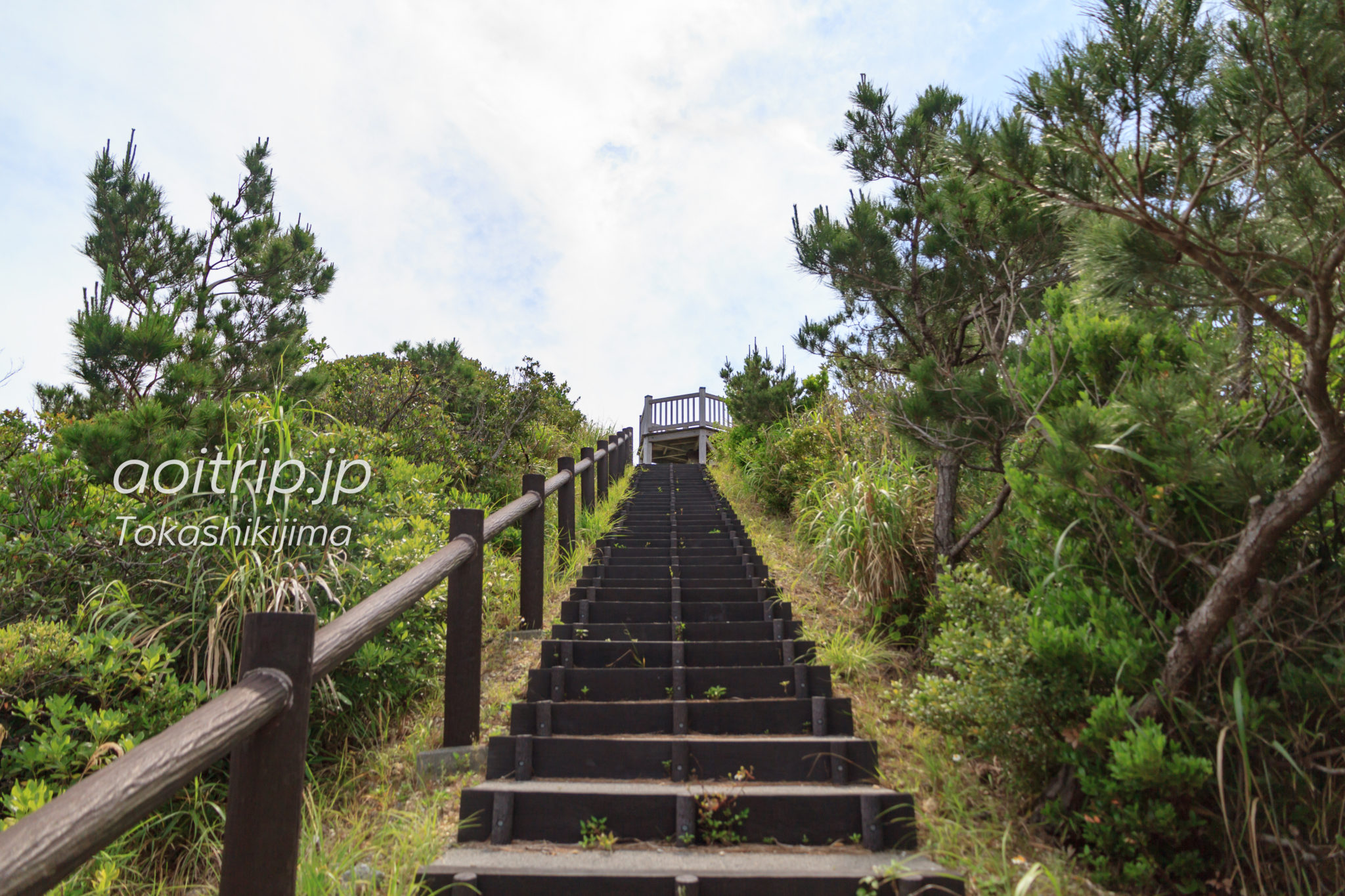 照山展望台Teruyama Observatory