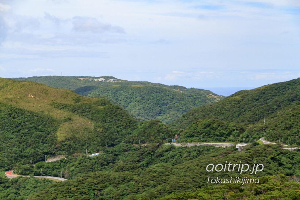 照山展望台とケラマツツジ(