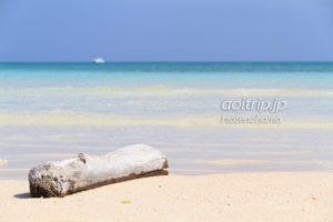 はての浜と流木