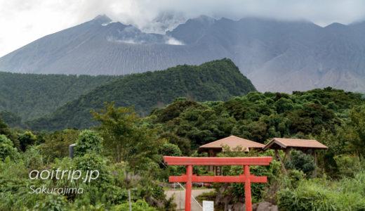 桜島をバスで一周する桜島自然遊覧コース