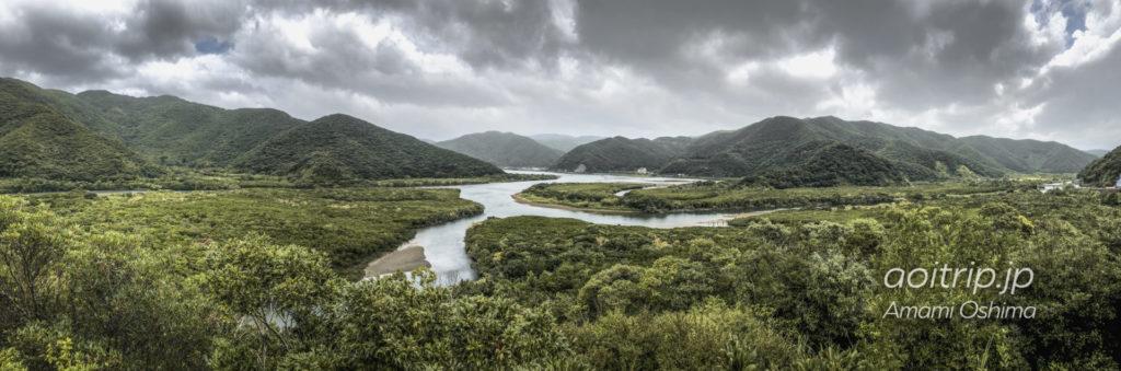 マングローブ展望台からのマングローブ原生林の眺望(パノラマ)