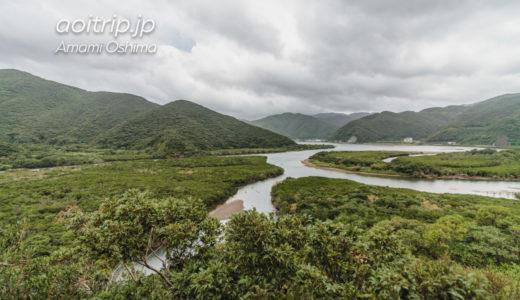 奄美大島マングローブ原生林とカヌーツアー