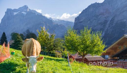 スイス・グリンデルワルト村歩き カウベルの音が鳴り響く丘