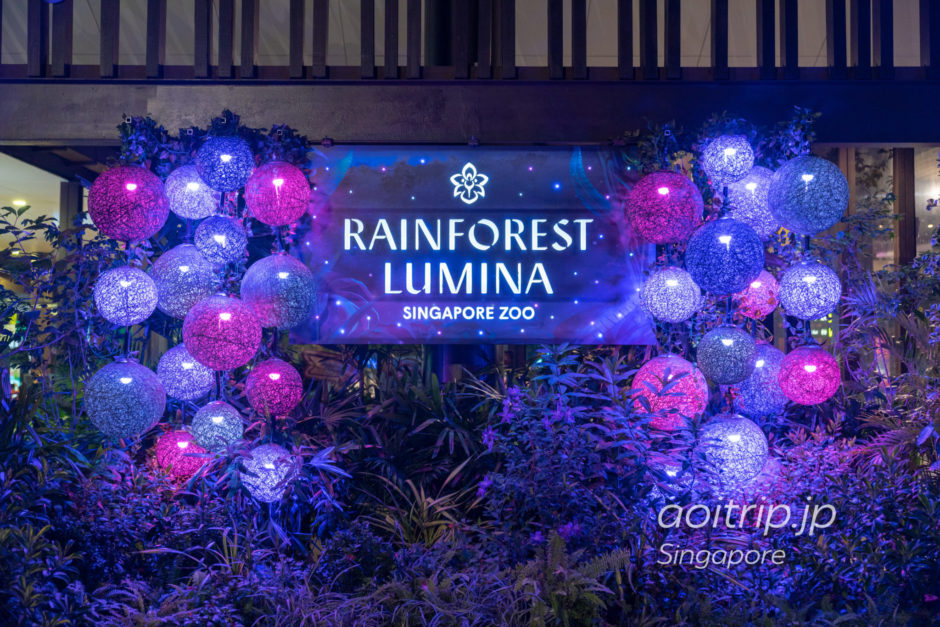 シンガポール動物園のレインフォレストルミナ