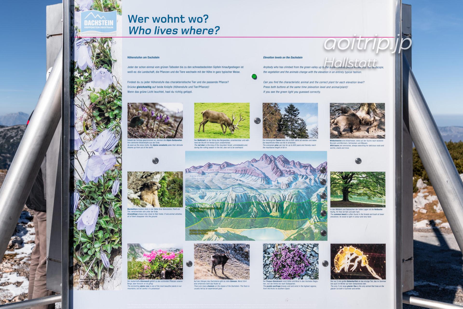 クリッペンシュタインの動植物案内