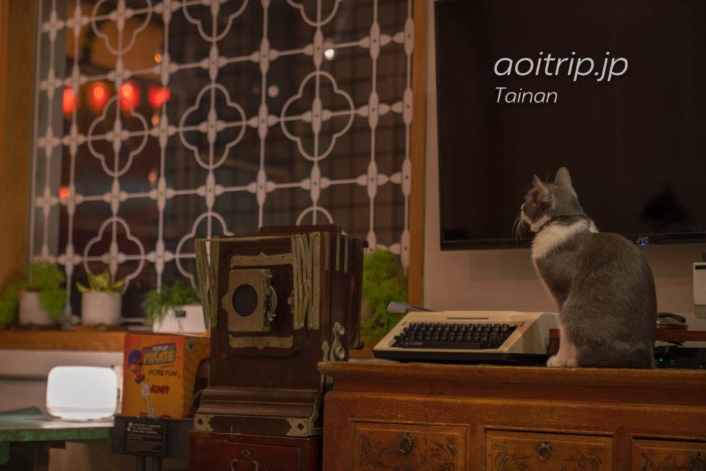 台南 漫半拍Lento Hostelの猫 A-Fi