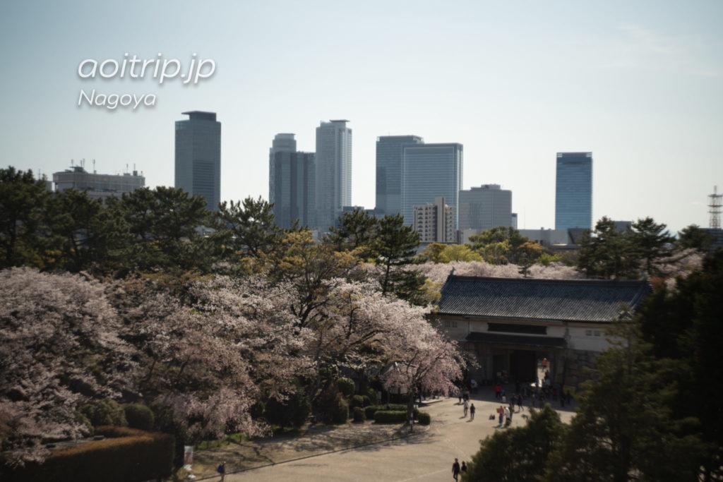 名古屋城の西南角櫓から桜を望む