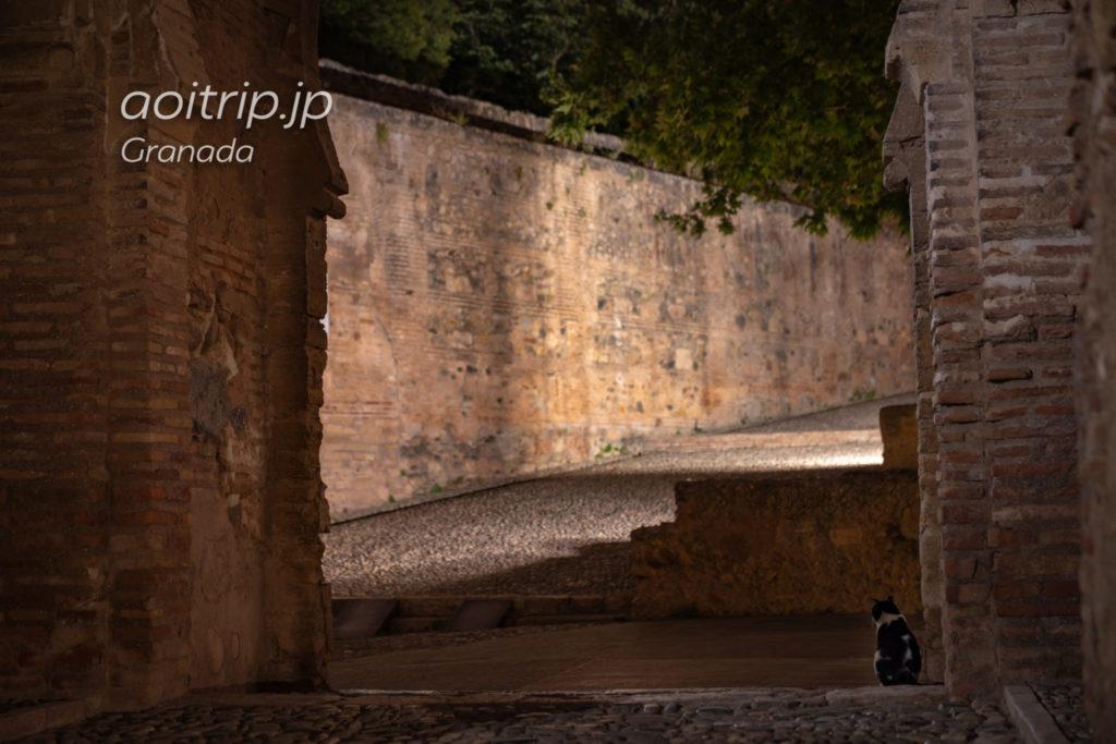 アルハンブラ宮殿の葡萄酒の門と猫