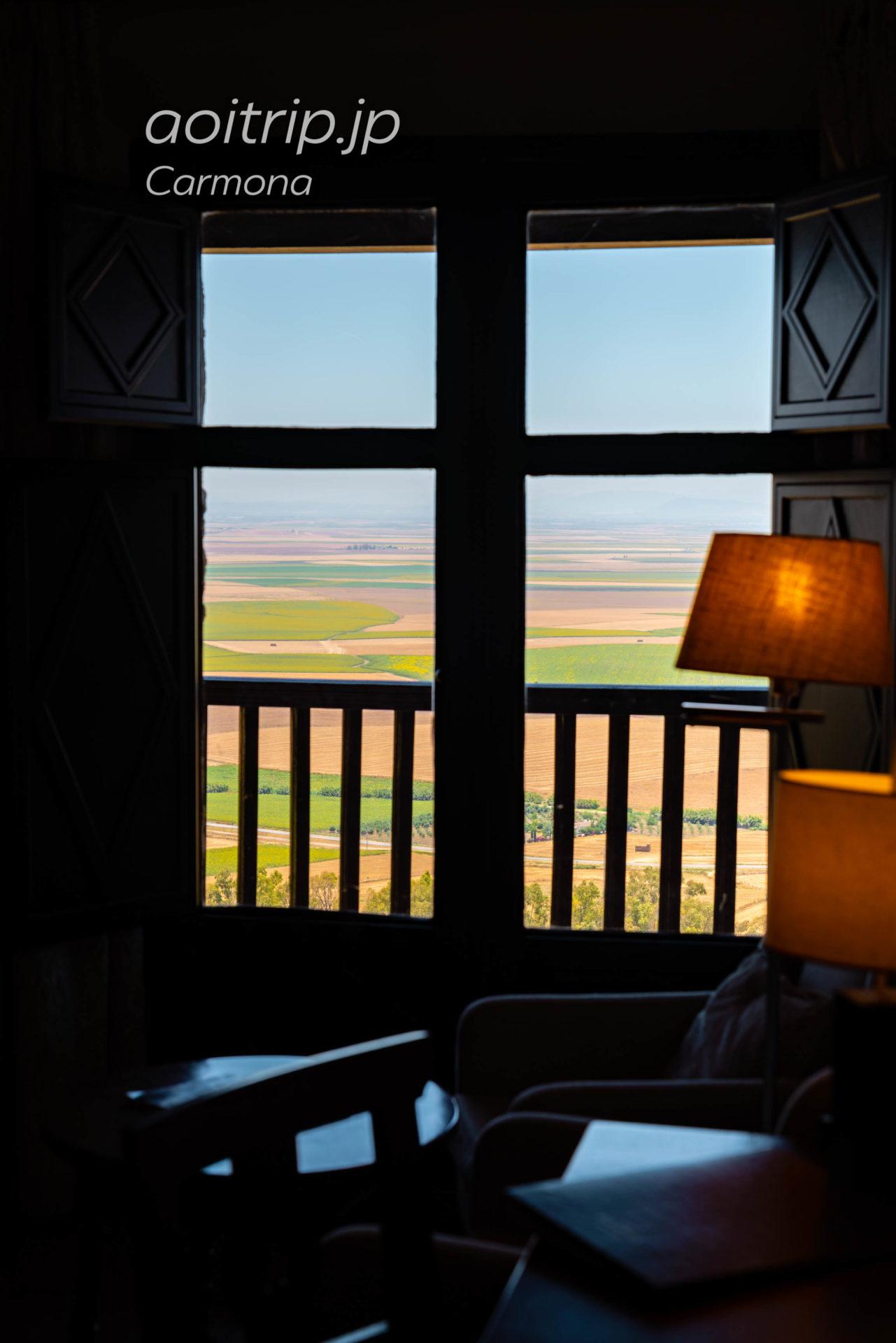 パラドールデカルモナの窓からの眺望