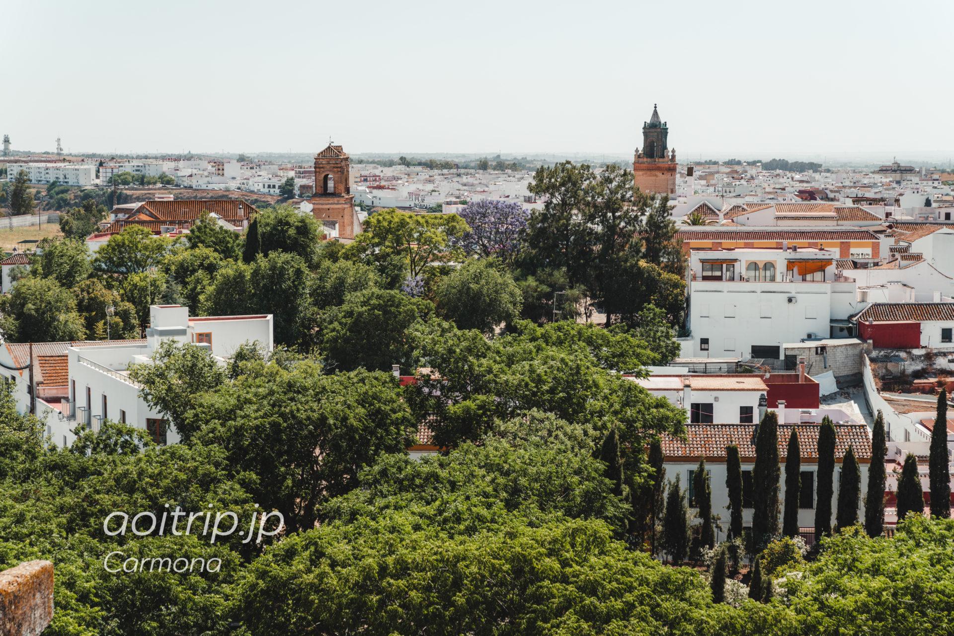 カルモナのAlcázar del Rey don Pedroの眺望