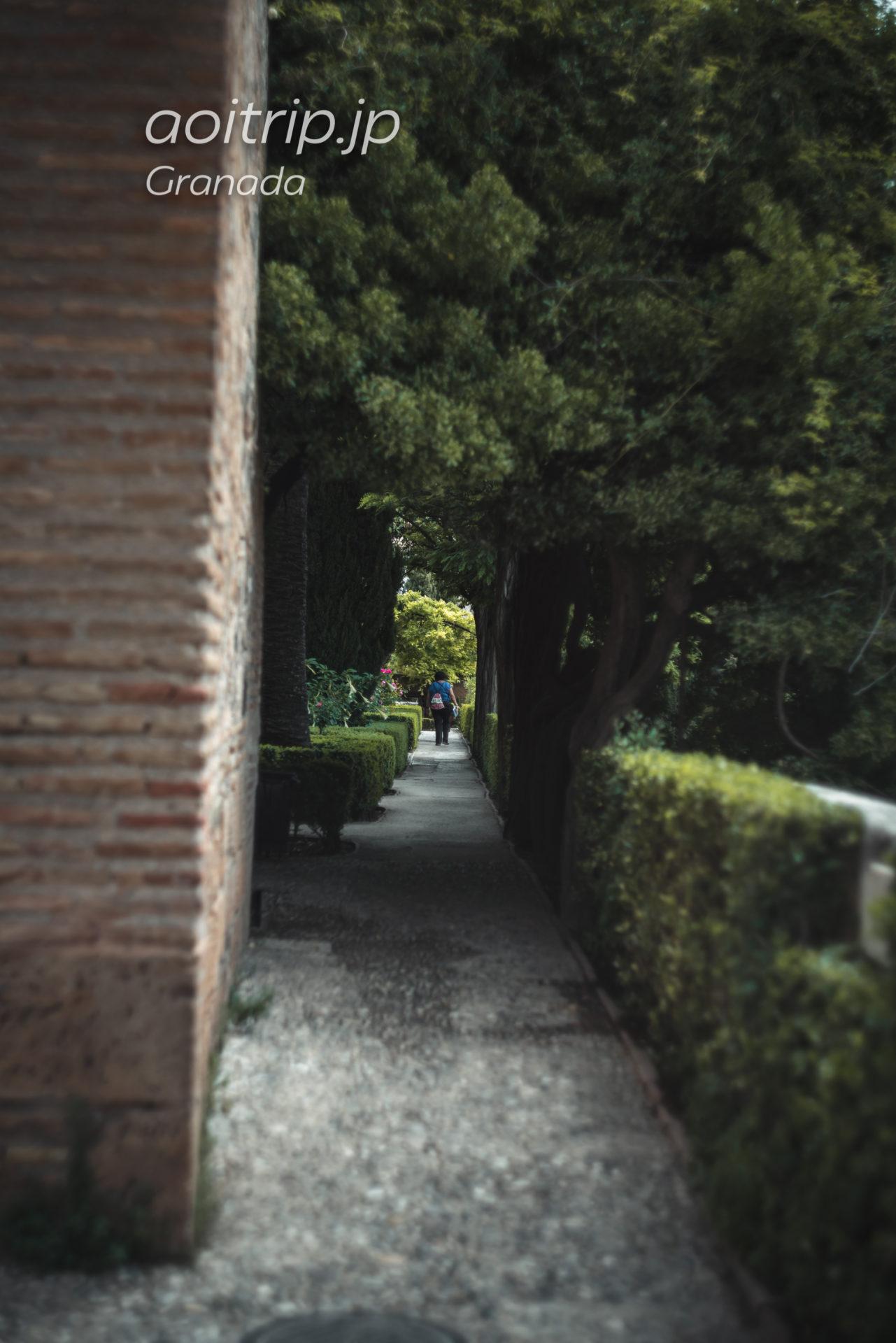 アルハンブラ宮殿アルカサバ 巡視路の庭園 Jardin del Adarve
