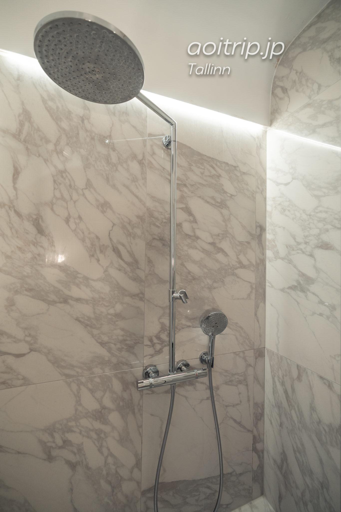 ホテル テレグラーフのバスルーム
