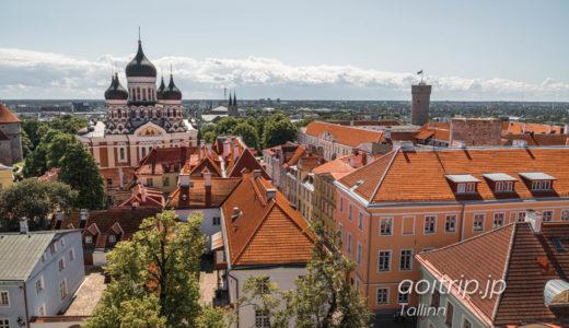 タリン聖母マリア大聖堂 トームキリク(エストニア)|St Mary's Church Tallinn