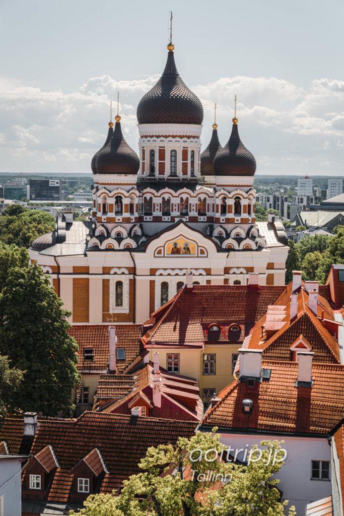 タリン聖母マリア大聖堂 鐘楼から望む聖アレクサンドル ネフスキー大聖堂