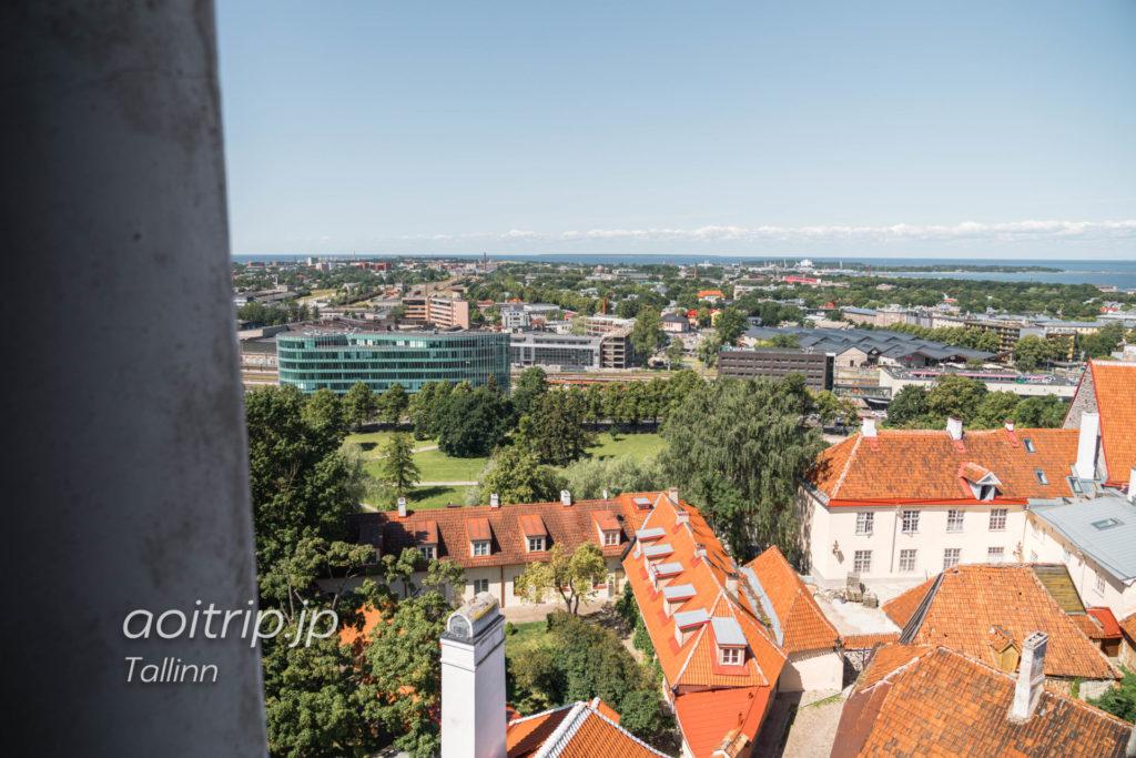 タリン聖母マリア大聖堂 鐘楼からの眺望