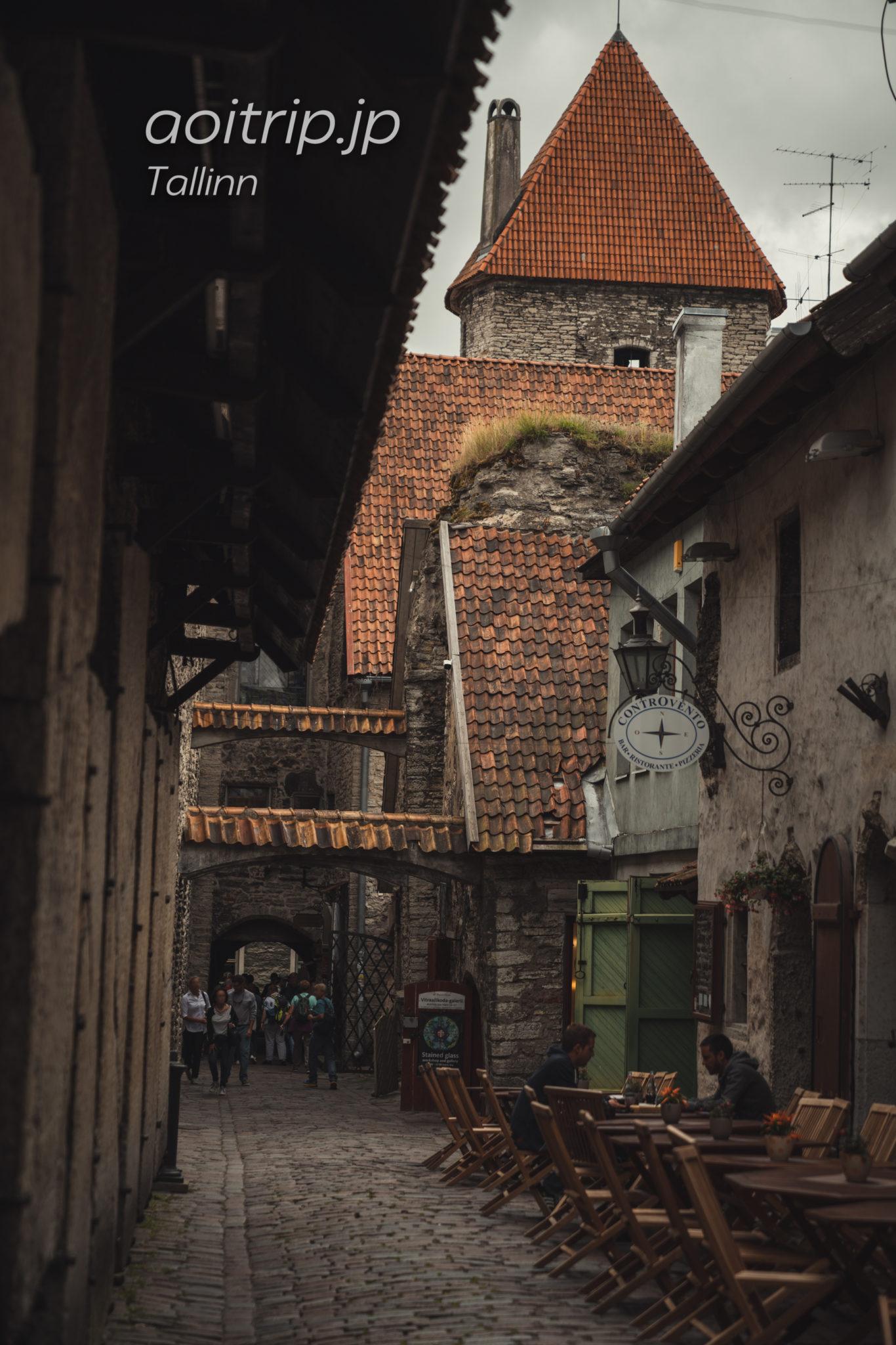 エストニア・タリン 聖カタリーナの小径