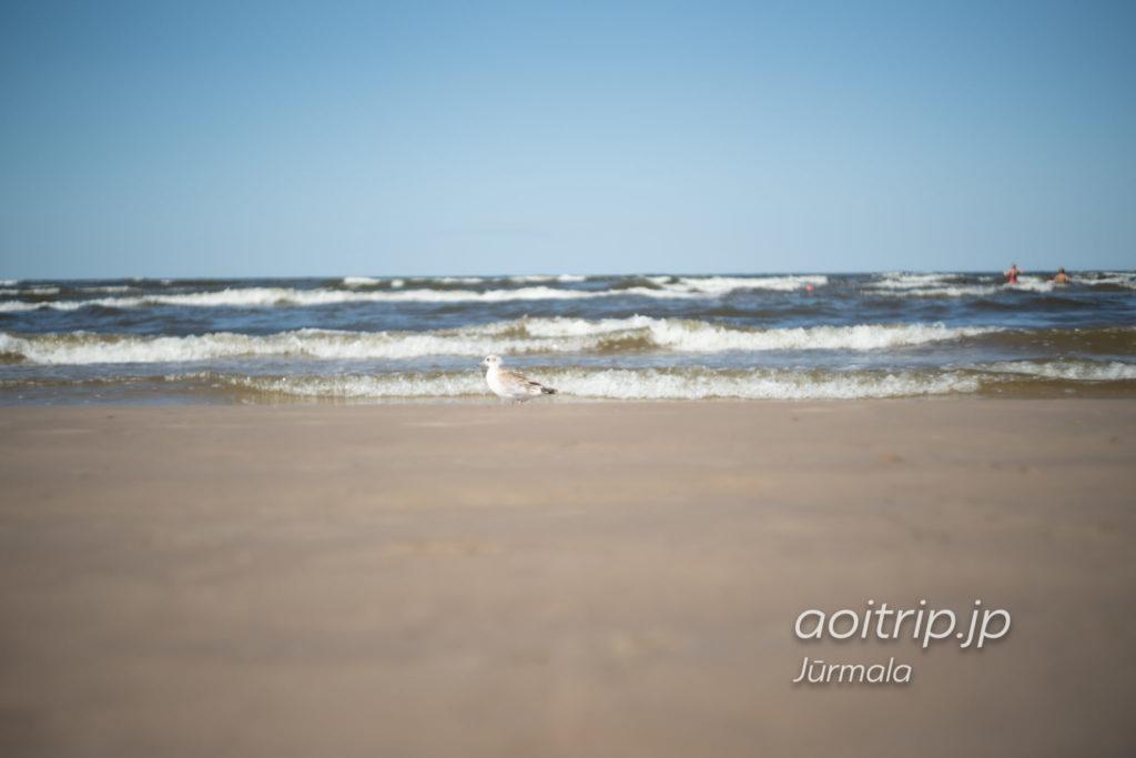 ユールマラのMajori Beach