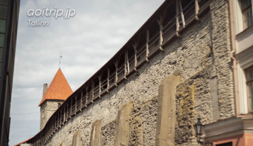 タリン旧市街を囲う城壁(エストニア)|City Wall of Tallinn, Estonia