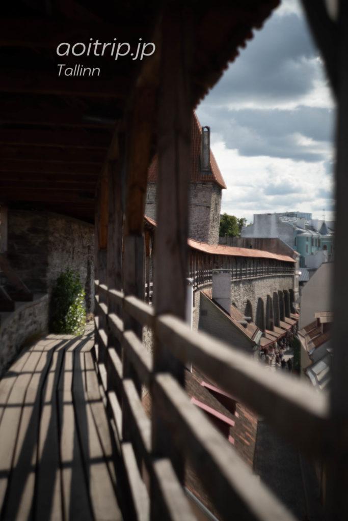 エストニア タリン旧市街の城壁 へレマン塔
