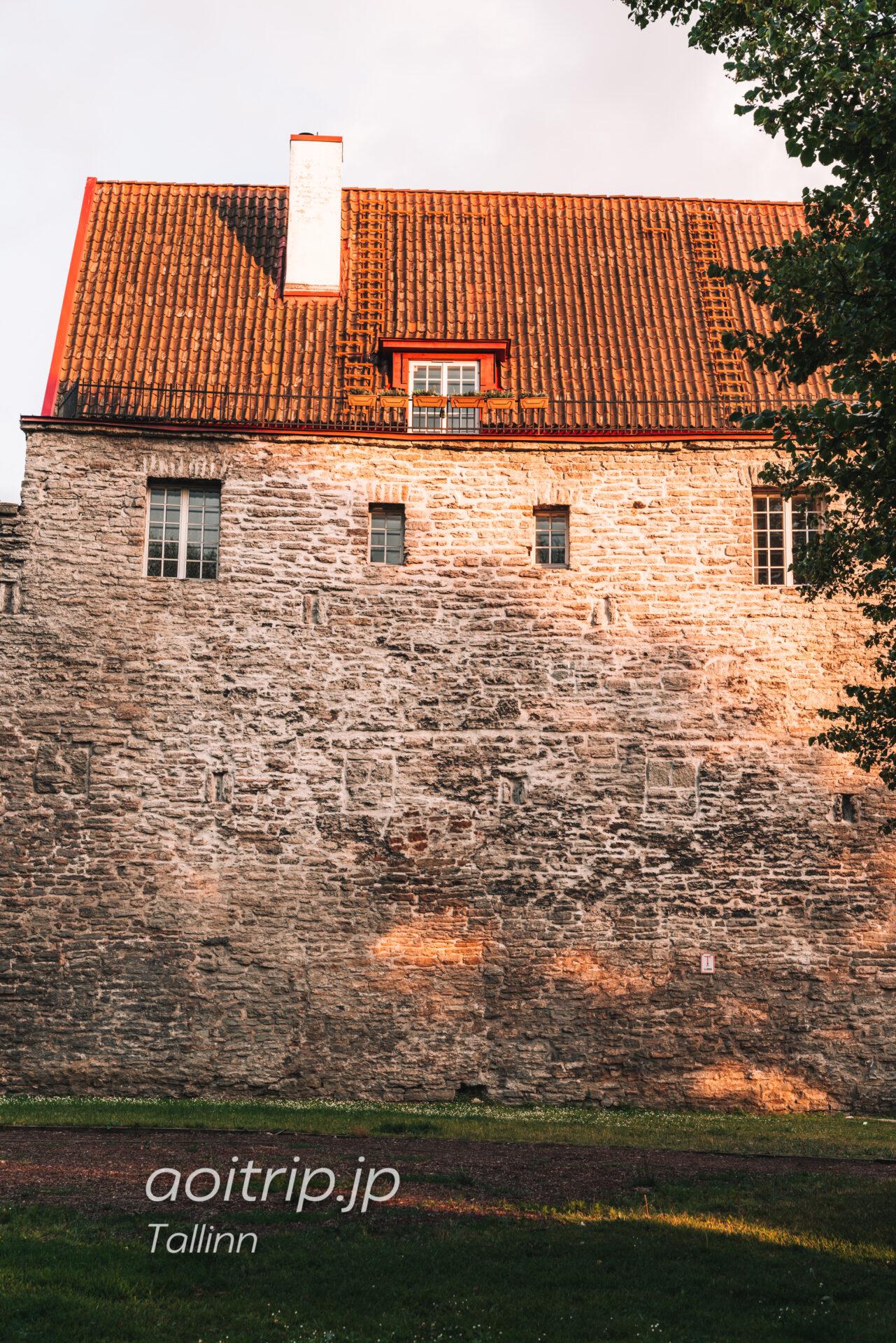 タリン西側「塔の広場」を散策する(エストニア)|The Tower's Square