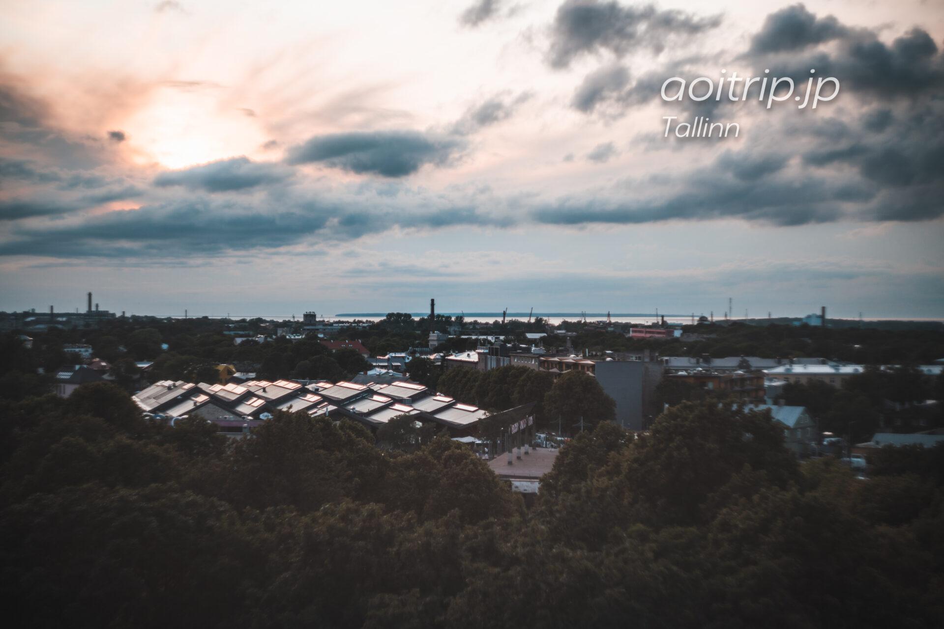 タリン パットクリ展望台からの眺望