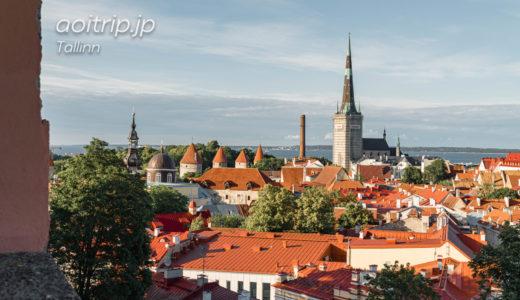 エストニア・タリンの展望台から町を一望する|Tallinn, Estonia Viewing Platform