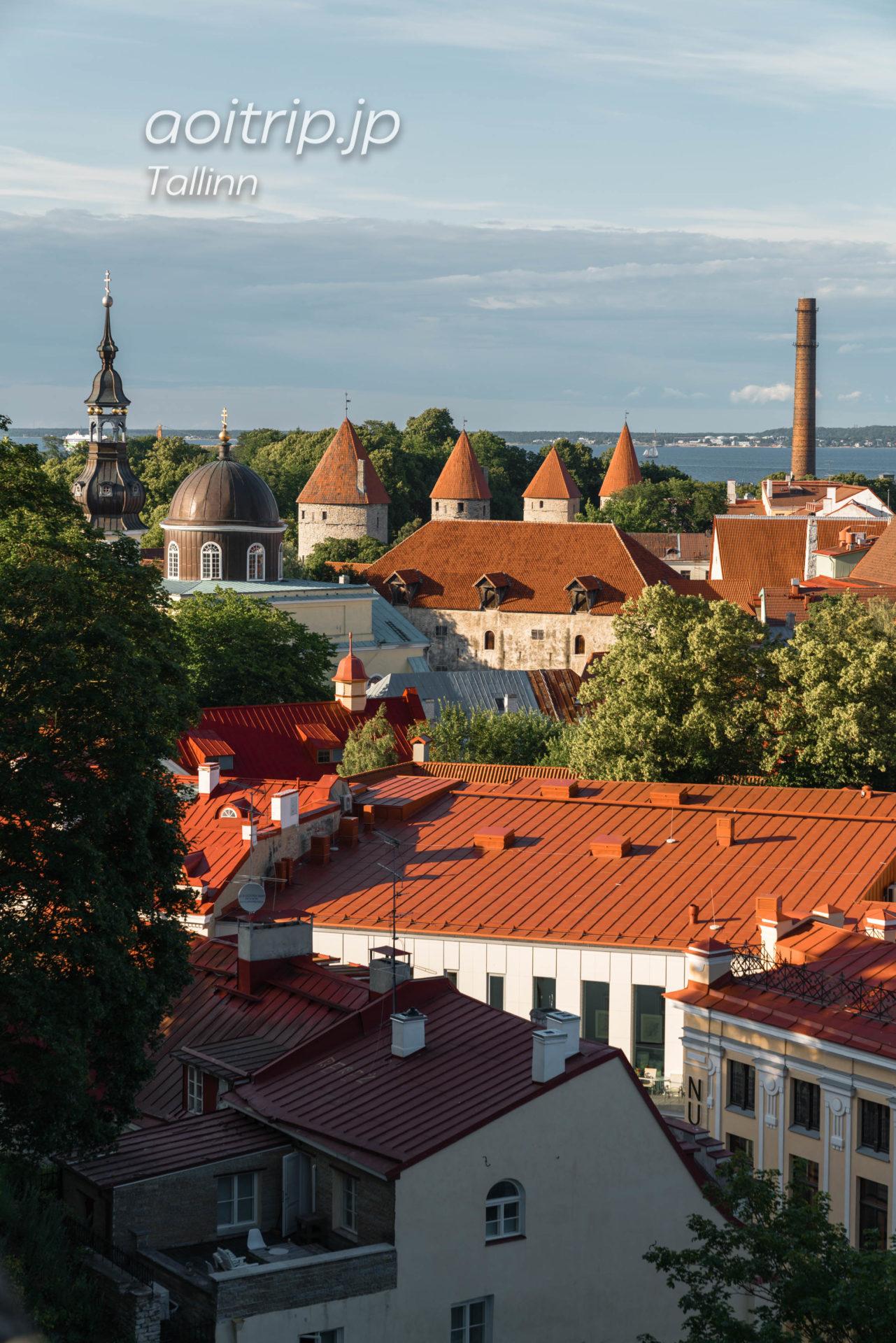 エストニアタリンの展望台 コフトウッツァ展望台