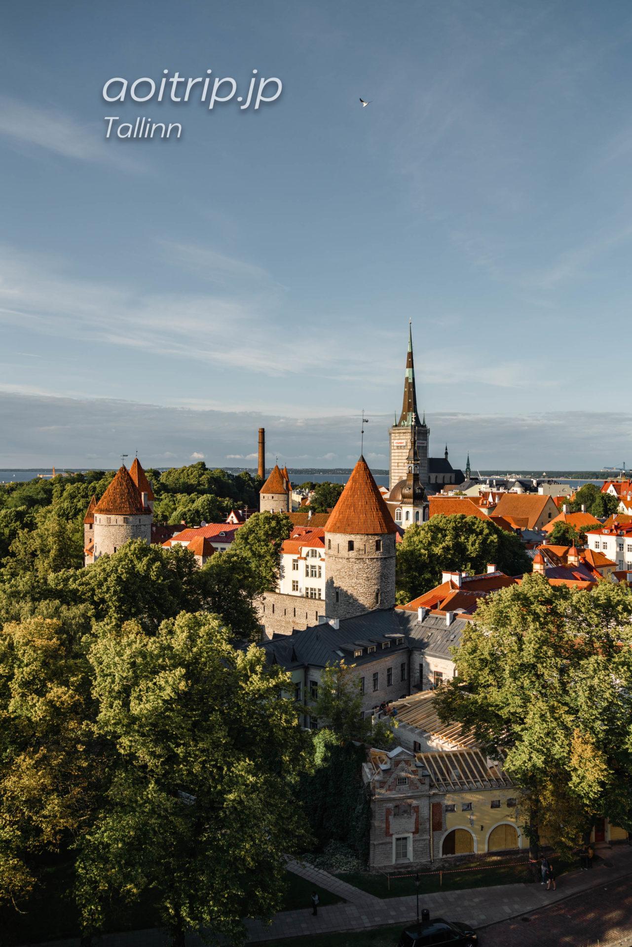 エストニアタリンの展望台 パットクリ展望台