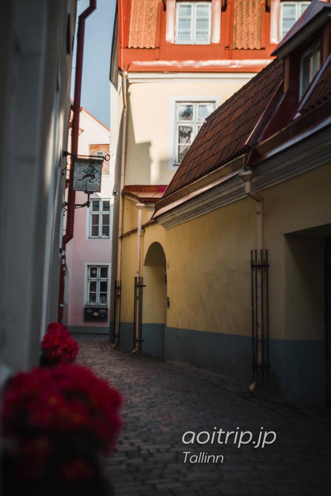 エストニア タリンの町並み