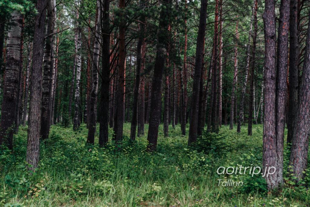 エストニア民族野外博物館(タリン) |Estonian Open Air Museum