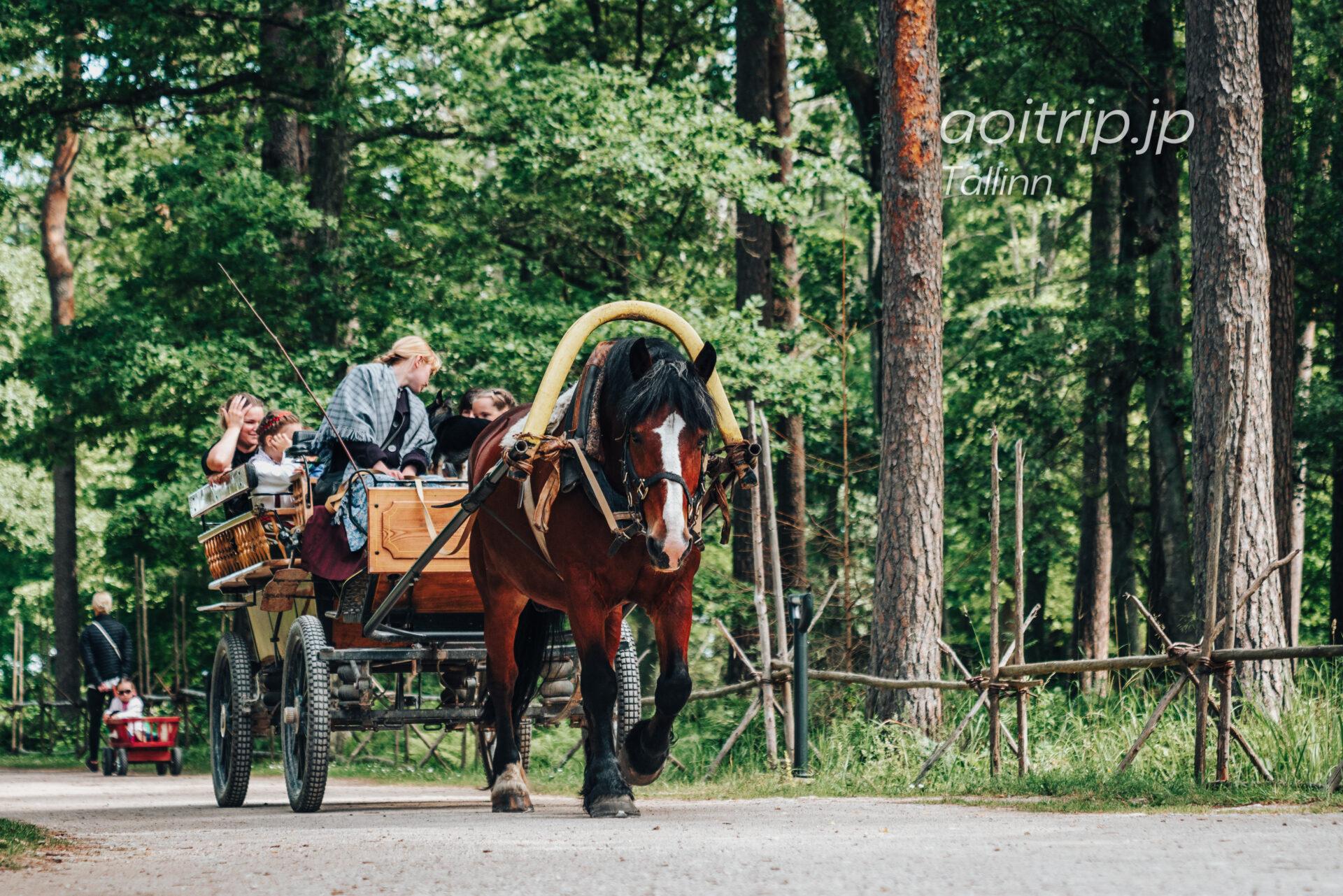 エストニア野外博物館 馬車