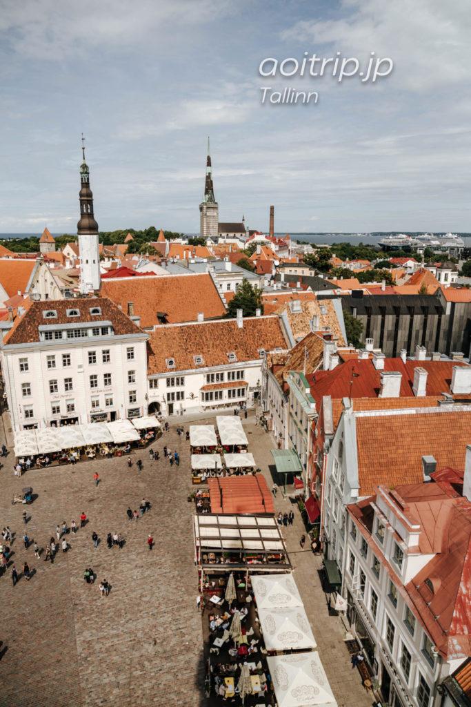 エストニア タリン ラエコヤ広場(旧市庁舎)