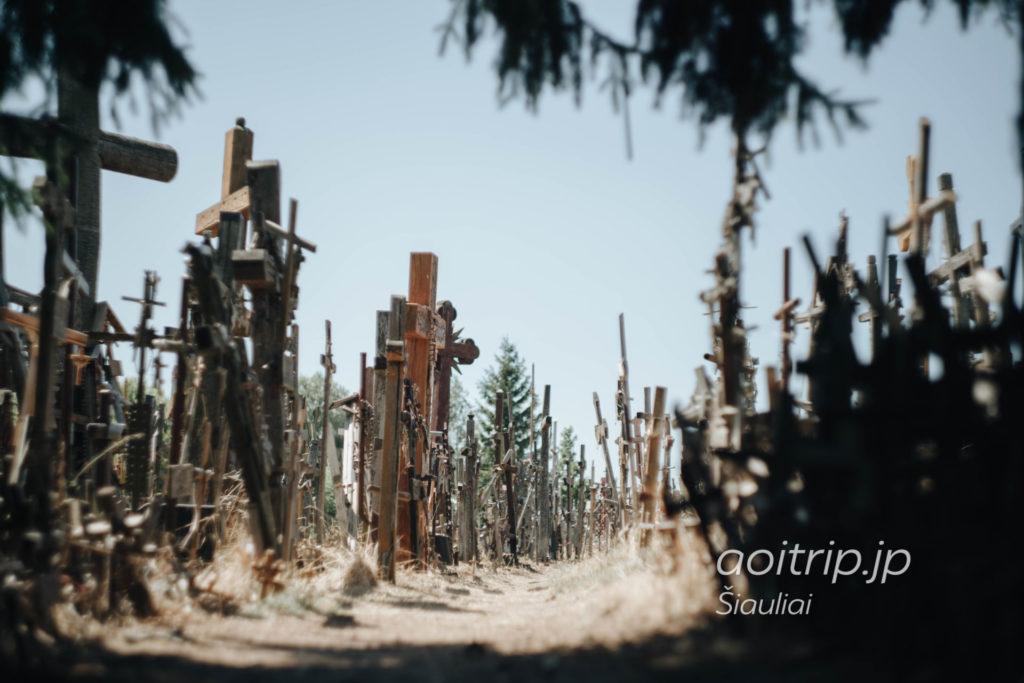 リトアニア シャウレイ十字架の丘