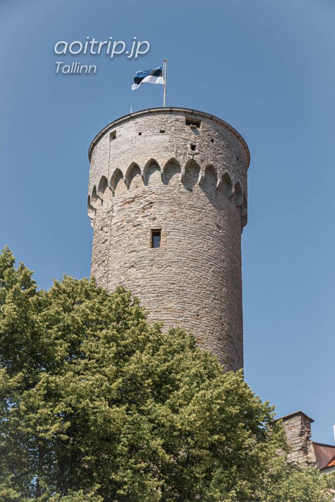 エストニア・タリン トームペア城
